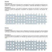 Anamots 30x7 n° 2