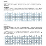 Anamots 31x7 n° 2
