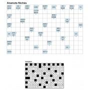 Anamots fléchés 17x11 n° 2