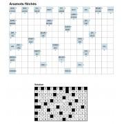 Anamots fléchés 17x11 n° 3