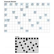Anamots fléchés 17x11 n° 7
