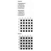 Anamots 10x10 n° 4